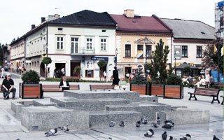 Donice miejskie Practic w Wadowicach