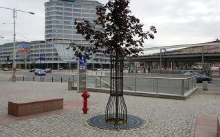 Kraty żeliwne, osłony drzew Wrocław